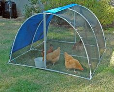 Give your chickens a field trip with this light and portable PVC chicken run/tractor. Find plans in the book 40 Project for Building Your Backyard Homestead. PVC coop. PVC tractor.