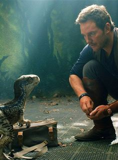 The New 'Jurassic World: Fallen Kingdom' Trailer Is Making Everyone Cry The newly released Jurassic World Chris Pratt, Blue Jurassic World, Jurassic World Fallen Kingdom, Jurassic World Movie, Jurassic Park Series, Jurassic World Raptors, Fantasy Wesen, Jurassic World Wallpaper, Jurrassic Park