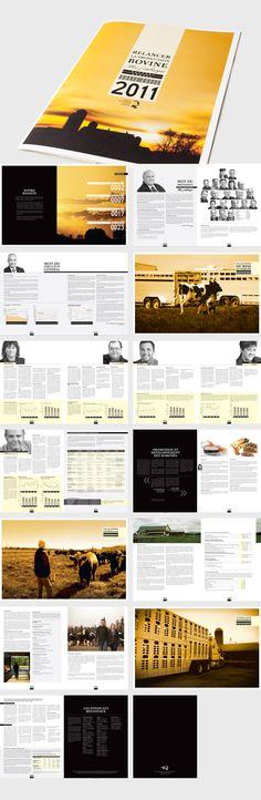Rapport Annuel FPBQ 2011 On Behance Annual ReportsEditorial Design BrochuresPresentationInternship ReportGraphicsCoverageSettingWork