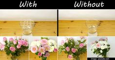 Who doesn't love giving and receiving flowers? Here is a very useful and easy tip for arranging your flowers in a vase that happens to be to big for your bouquet. All you do is filled your vase with water and dry off the top half of it with a paper towel. Then with a roll of clear tape make a...