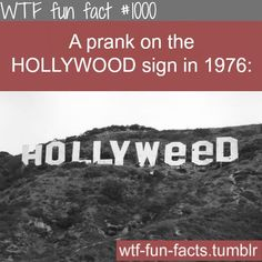 MORE OF WTF-FUN-FACTS are coming HERE funny and weird facts ONLY ...