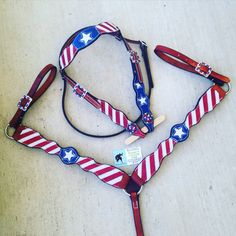 Magics Custom Tack Patriotic red white and blue American flag 4th of July set Www.magicscustomtack.com barrel racing rodeo horse riding tack dog cat collars leatherwork mounted shooting