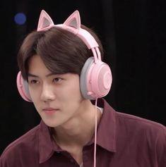Funny Kpop Memes, Exo Memes, Sehun Cute, Sulli, Meme Faces, Cute Icons, Girls Night Out, Boyfriend Material, Chanyeol