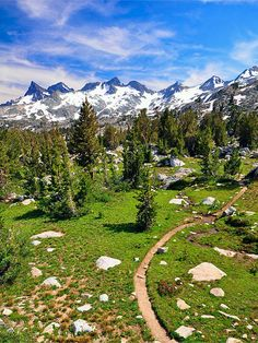 continental crest trail | 3100キロの長距離ハイキングコースでアメリカ ...