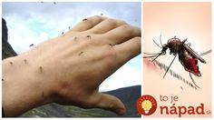 Akonáhle sa oteplí stále viac nás láka pobyt na vonku, na slniečku a v prírode. Všetko by to bolo úžasné, keby nám okolo uší nebzučali húfy krvilačných komárov takmer všade, kam sa len pozrieme. © Nie je to však žiadna veda. Zozbierali sme pre vás pár starých rád, ktoré používali v boji proti nim naši... Watercolor Tattoo, Fishing, Temp Tattoo, Peaches, Pisces, Gone Fishing