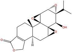 Triptolide for cancer