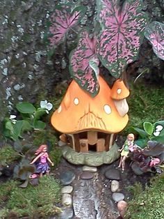 My faerie garden