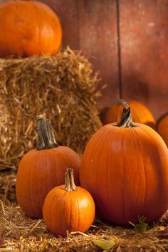 Make fake pumpkins using paper mache.