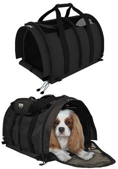 The best dog carrier for squishing under airplane seats. $89.95