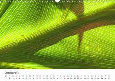 Monatskalender: Kraftquelle Grün. Grün ist die Farbe der Hoffnung, deshalb wird das junge Frühlingsgrün auch immer besonders ungeduldig erwartet. Wie schön, wenn es hier einen Kalender gibt, der uns jeden Monat beim Ansehen Kraft und Energie schenkt. #grün #green #kalender #calendar