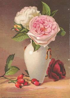 Get your hands on a customizable Vintage Victorian Roses postcard from Zazzle. Find a large selection of sizes and shapes for your postcard needs! Vintage Christmas Cards, Vintage Cards, Vintage Postcards, Victorian Flowers, Vintage Flowers, Coming Up Roses, Botanical Flowers, Art Pictures, Vintage Pictures