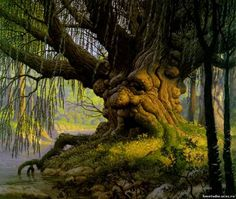 властелин колец дерево чудище - Pesquisa Google