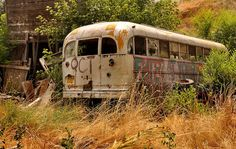 Old school bus - photographed by Jayna Rice