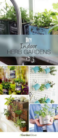garden Tips Indoor - 14 Brilliant DIY Indoor Herb Garden Ideas. Garden Great Ideas, Garden Inspiration, Container Gardening, Gardening Tips, Organic Gardening, Indoor Gardening, Dream Garden, Home And Garden, Herbs Indoors