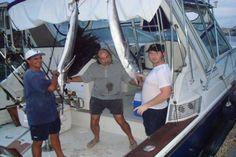 Pescadores celebran la captura de dos peces Marlin.