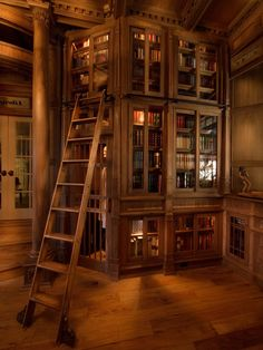 My dream home library. The Beauty and the Beast ladder with quaint wooden bookcases. I hope I collect enough books to fill a book case.