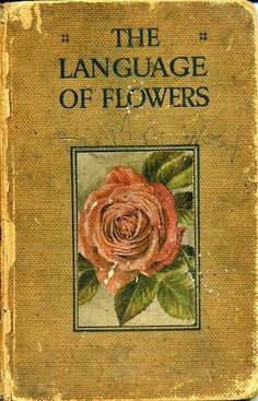 The Language of Flowers. Digital photo by Phil Gates of A Digital Botanic Garden… Die Sprache der Blumen. Digitales Foto von Phil Gates von A Digital Botanic Garden. Book Cover Art, Book Cover Design, Book Art, Cover Books, Best Book Covers, Vintage Book Covers, Vintage Books, Old Books, Antique Books
