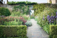 The rose garden, with figs trained on the walls and irises planted among the roses/Sissinghurst