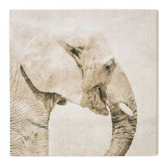 Graham and Brown Trunk Printed Canvas Wall Art - 41-826