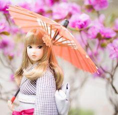 りょうつ @ryoutu3 5月1日  「庭園」 #momokoph