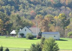 Free Daily List of Homes for Sale in Wayne County