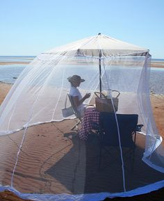 my ideal picnic at the beach - flying insect free!