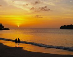 two person on beach during sunset I had a wonderful week of rest and relaxation on the Caribbean island of […] Couple Beach Photos, Photos Bff, Travel Deals, Travel Destinations, Caribbean Vacations, Rest And Relaxation, Poses, Beautiful Islands, Travel Pictures