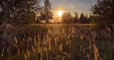 Autumn sunset by Valery Boyarsky on 500px