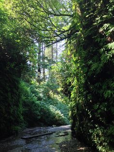 California's ten best trails to day hike. A couple I've done, a couple for the bucket list. This list is pretty SoCal-centric, but I'd still like to check these out.