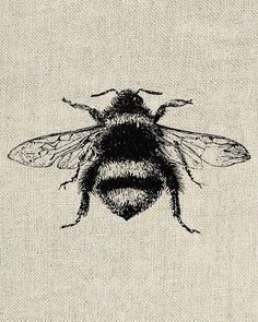 Bumble Bee Vintage Clipart - Printable Digital Image 213 - INSTANT DOWNLOAD