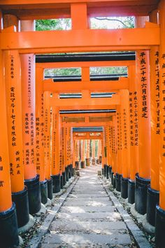 Just another one of those places I was dying to visit in Japan. Blur Background Photography, Blur Photo Background, Editing Background, Pastel Background, Picsart Background, Iphone Background Images, Love Background Images, New Backgrounds, Torii Gate