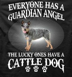 Everyone has a guardian angel. The lucky ones have a Cattle Dog Aussie Cattle Dog, Austrailian Cattle Dog, Aussie Dogs, Cattle Dogs, Dog Rules, Blue Dog, Dogs And Puppies, Doggies, Dog Life