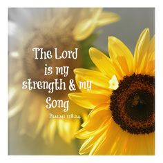 The Lord is my Strength and Song Bible Verse Postcard Inspirational Christian quotes verses and saying on postcards cards and notes. Favorite Bible Verses, Bible Verses Quotes, Biblical Quotes, Faith Quotes, Christian Messages, Christian Quotes, Fall Facebook Cover Photos, Christian Facebook Cover, Sunflower Quotes