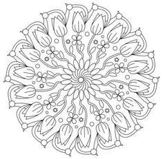 Mandala 670