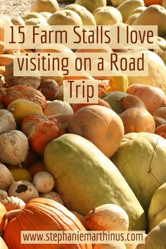 Road trips is the best way to fully enjoy what South Africa has to offer and visiting farm stalls on the journey is the best pit-stop. Stalls, Wine Recipes, South Africa, Travel Tips, Road Trip, Hacks, My Love, Blog, Travel Advice