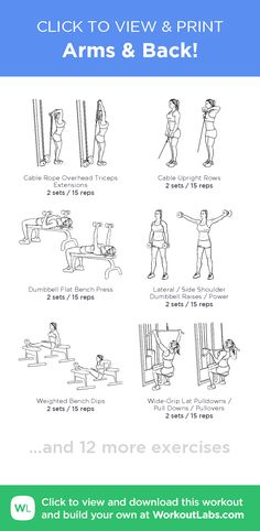 Arms & Back! –click to view and print this illustrated exercise plan created with #WorkoutLabsFit
