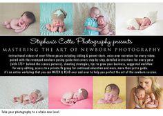 Best newborn poses. Newborn posing tutorial.  Favorite newborn poses.  How to pose a newborn.  Newborn photography.    https://www.facebook.com/stephaniecottaphotography