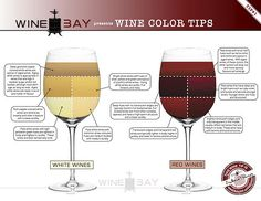 Wine Tips brought to you by WineBay