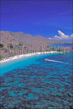 Indonesia, komodo island, view of pink beach, tourists landing in zodiac