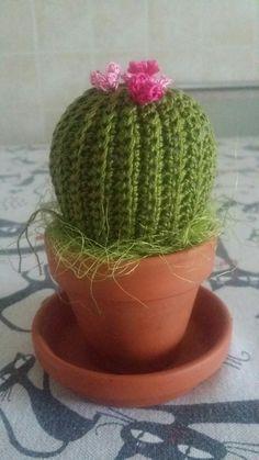 Cactus all'uncinetto. ..l'ho fatto io..