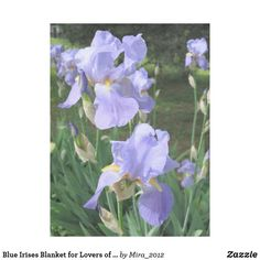 Blue Irises Blanket For Lovers Of Flowers Best Birthday GiftsBirthday