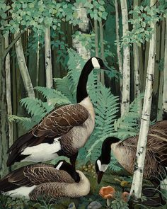 Jessie Arms Botke (American, 1883-1971) Wild geese in a birch wood 40 x 32in overall: 46 1/2 x 38 1/2in