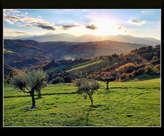 Paesaggio marchigiano, 25 novembre 2012 | Flickr - Photo Sharing!