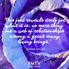 """""""This food reveals itself for what is: No mere thing but a web of relationships among a great many living beings."""" - Michael Pollan  www.fmtv.com"""