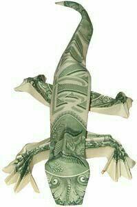 Dollor bill lizard