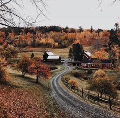 Fall countryside