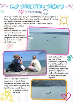 A Dolphin Diary