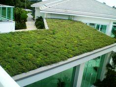 Ecotelhado, telhado, telhados, telhado verde, telhado de grama, cobertura vegetal, jardim suspenso, jardins suspensos