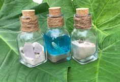 Ocean in a Bottle, Beach Bottle with Florida Sand, Ft Myers Sea Shells, Sea Glass, Peek into the Ocean Filled Beach Bottle, Gift for anyone