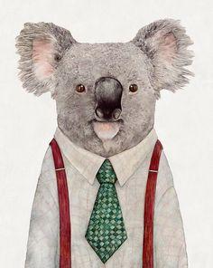 animalcrew   Koala